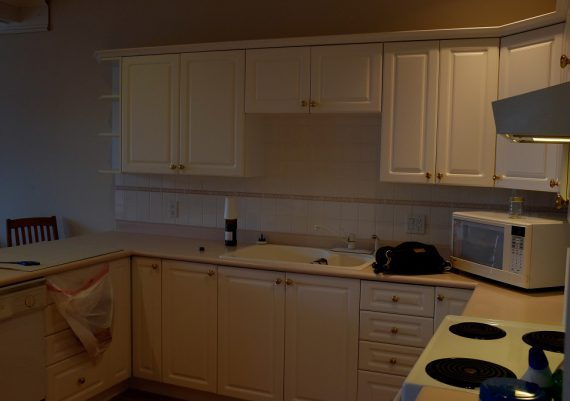 Gold-Falcon-Heights-Contracting-Fable-Beach-Kitchen-before